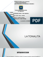 336693085-TONALITA.pptx