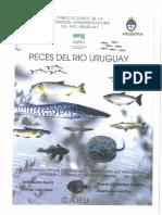 Peces del Río Uruguay.pdf