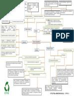 66739988-Mapa-Conceptual-Cultura-Corporativa-Equipo-Rik.pdf