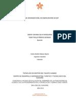INFORME ORGANIZACIONAL DE ENERGUAVIARE.docx