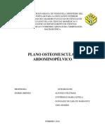 Informe Anatomia Plano Osteomuscular