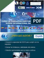 Norma Internacional Basc_parte 1