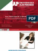 Ayuda 5-La Intervencion Sexologica
