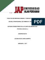 DESCRIPCION ETNOBOTANICO DE  VERDOLAGA.docx