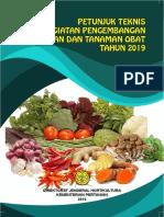 Juknis-STO-2019.pdf
