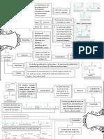 Química orgánica industrial (Diagrama).docx
