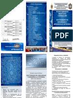 Tríptico Doctorado en Seguridad y Defensa Integral DSDI UNEFA