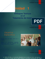 Unidad 1 adultez power.ppt