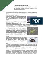 ECOSISTEMA DE LA ANTARTIDA rossi.docx