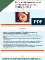 Características del recién nacido