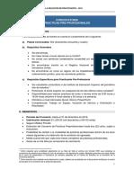 PRE_PROFESIONAL.pdf