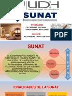 SUNAT (1)
