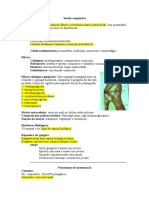 Anatomia Do Periodonto II
