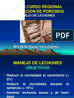 5.MANEJO DE LECHONES.ppt