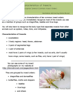 howtorecognizeinsects.pdf