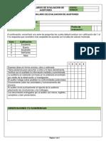 Formularios de Evaluacion de Auditores