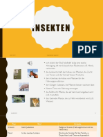 Insekten_PV.pptx