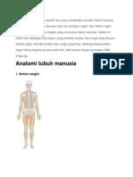 Anatomi Tubuh Manusia Adalah Ilmu Yang Mempelajari Struktur Tubuh Manusia