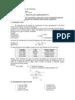 1. Analisis de La Formacion de Una Sal Co Mpleja -Complejos de Werner---1