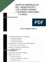 Tema 1 Concepto y Posicion Anatomica