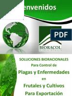 PRESENTACIÓN BIORACOL FRUTALES EXPORTACIÓN.pptx