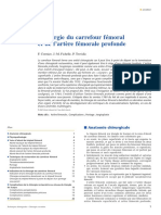 EMC 2007 Chirurgie Du Carrefour Femo