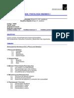 Estructura de un programa de psicología dinámica