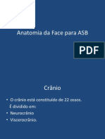 Anatomia Da Face Para ASB