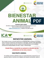 Bienestar Animal Implementadores Bpg Carne(1)