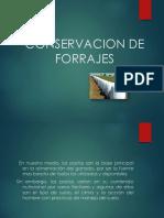 Evidencia Conservacion de Forrajes