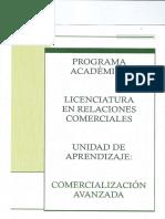 comercialización-avanzada (2)