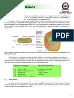 DOC-20190802-WA0000.pdf