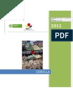 CCI, 2012. Competitividad Cebolla
