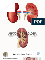 Anatomia y Semio Renal