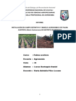 manejo agronomico.docx