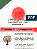 Caracteristicas Del Microcuento