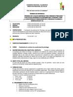 TDR MONITOREO DIRESA PSICOLOGO.docx