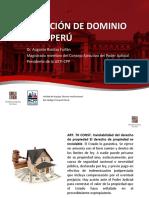 PERDIDA DE EXTINCION DE DOMINIO