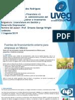 Hernandez_Victor_ Fuentes de financiamiento externo.pptx