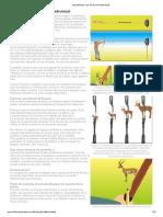 Apuntando con el arco tradicional_.pdf