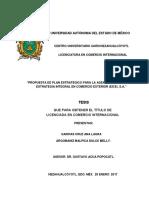 TESIS Ana Laura y Dulce Melly.pdf