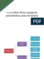 Perdarahan dalam gangguan pertumbuhan janin intrauterin.pptx