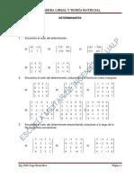 Determinantes Unlp 2019