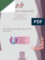 Embarazo Adolescente Resumido