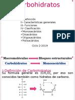 Carbohidratos 19.Est