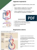11 App. Respiratorio