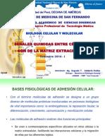 TM Clase 6. Señales Quimicas Entre Celulas y Con La Matriz Extracelular