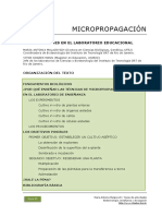 13_Micropropagacion_laboratorio_educacional.pdf