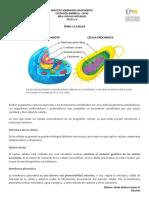 Ciencias Naturales Ciclo i y II