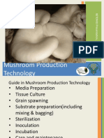 BGB Presentation Mushroom Production Technology-2017